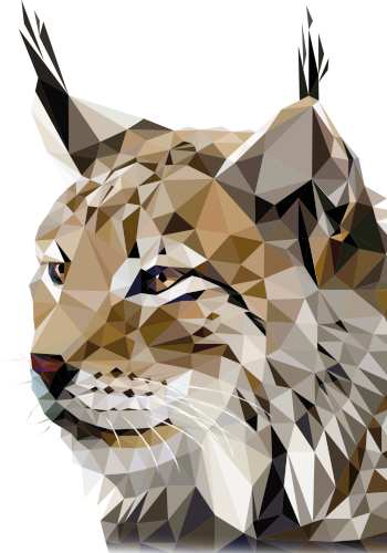 a low poly lynx, symbol of Modulo education group